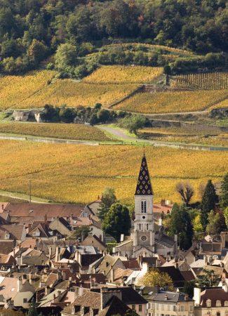 Die Climats von Burgund in der UNESCO