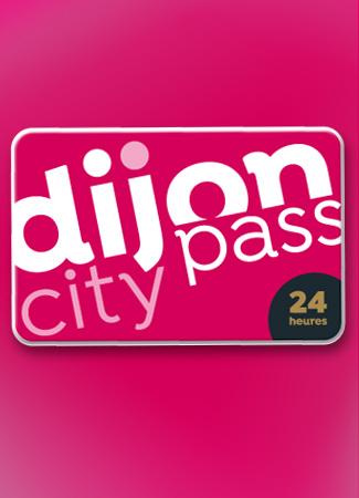 Dijon City Pass: 24 h