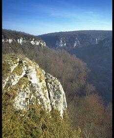 Réserve Naturelle de la Combe Lavaux – Jean Roland - 1