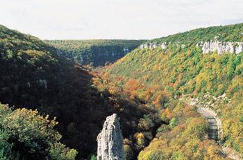 Réserve Naturelle de la Combe Lavaux – Jean Roland - 2