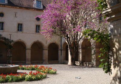 Musée de la Vie bourguignonne Perrin de Puycousin - 6
