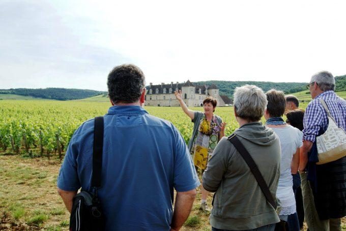 """Clos de bourgogne, ateliers découverte """"vigne et vin"""" - 2"""