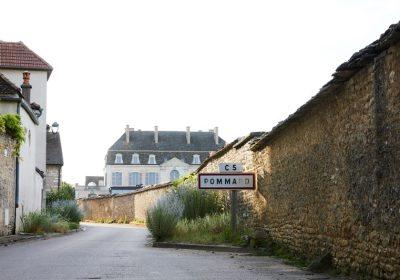 Expérience la Route des Grands Crus – Château de Pommard - 0