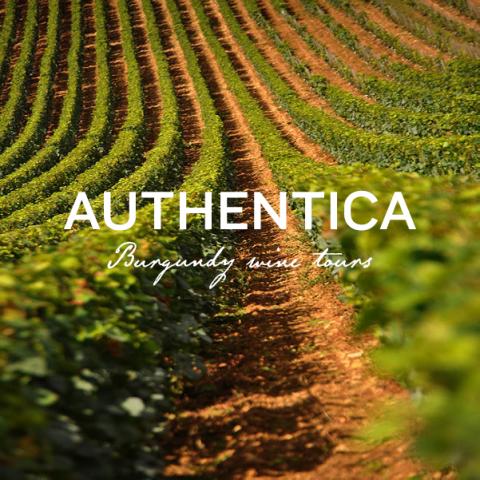 Authentica Tours - 0