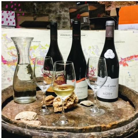 """Clos de bourgogne, ateliers découverte """"vigne et vin"""" - 9"""