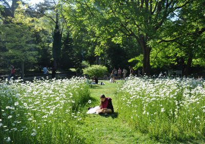 Jardin des Sciences – Jardin botanique - 3